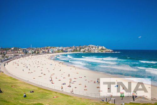 Sydney Minibus Hire to Bondi Beach