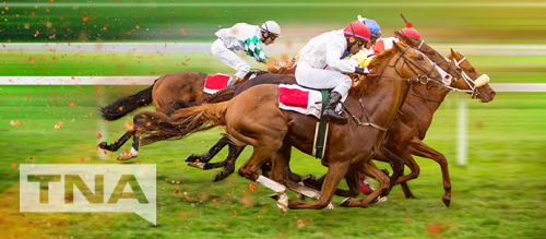 Four horses racing on horse racing track