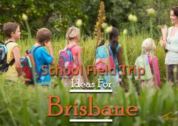 School-Field-Trip-Ideas-For-Brisbane