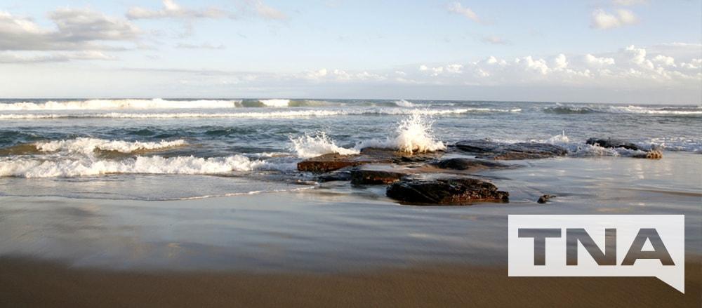 coledale beach sydney