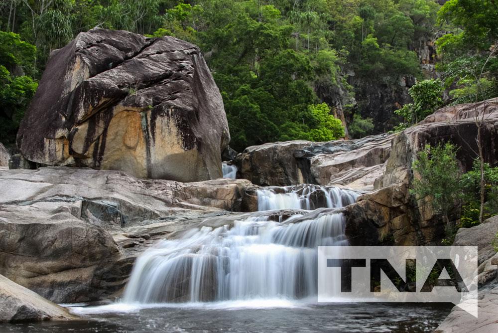 Townsville Bus Hire to Paluma Range National Park